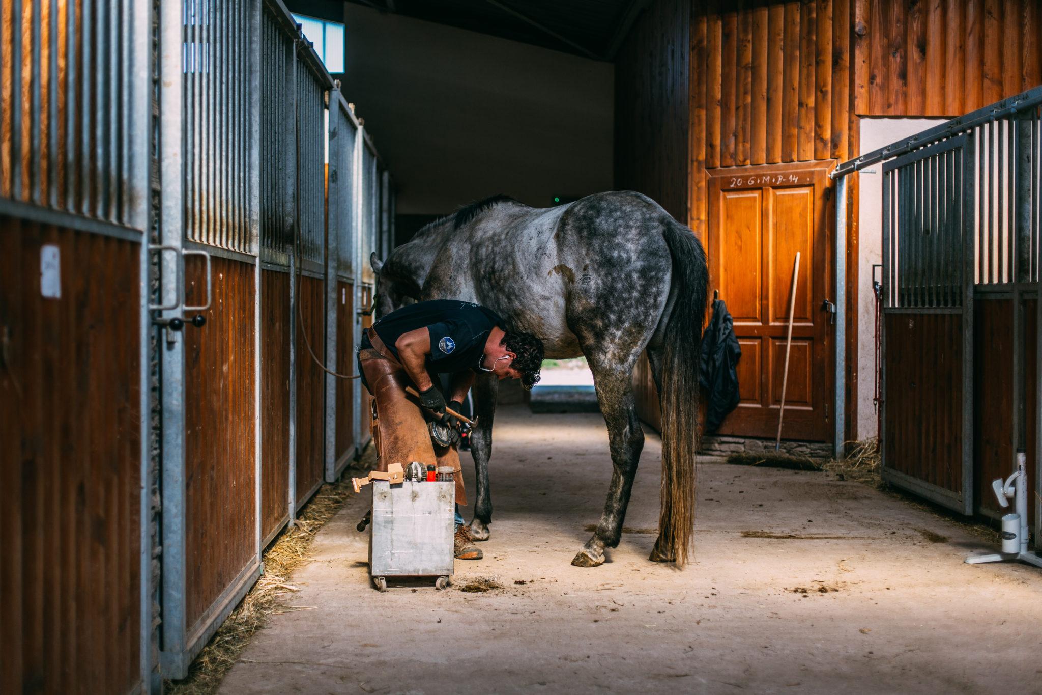 Ustajnenie koní - Jazdecký Areál Sv. Františka