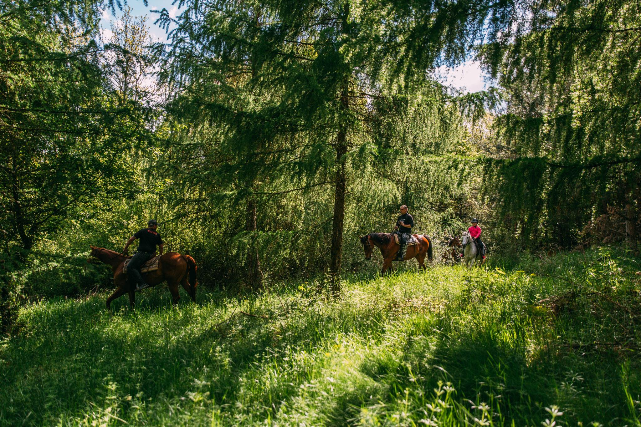 Jazdenie na koni v prŕode - Jazdecký Areál Sv. Františka