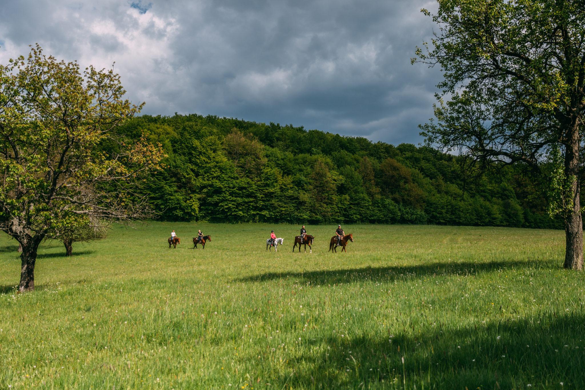 Jazdenie v prírode - Jazdecký Areál Sv. Františka